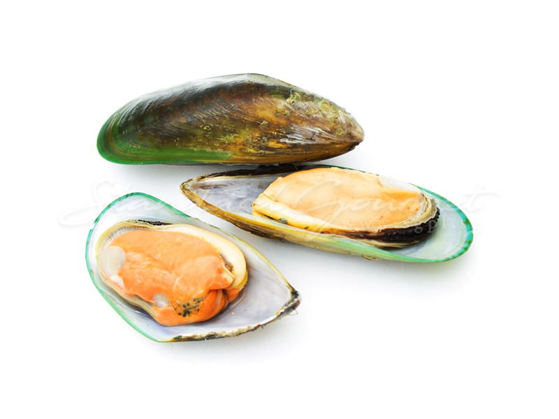 Green Mussels/Half Shell Green Mussels/Green Mussels Meat